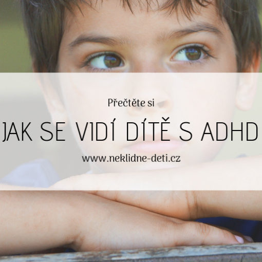blog_jak_se_vidi